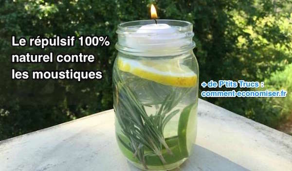 anti moustique efficace naturel