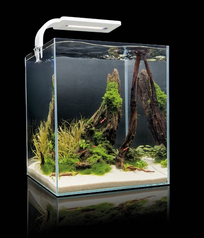 aquarium 30 litres complet