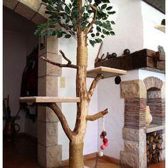 arbre a chat vrai arbre