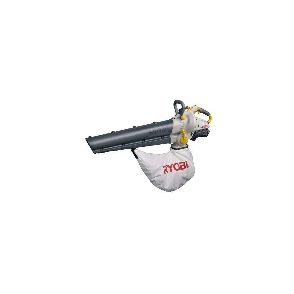 aspirateur souffleur ryobi
