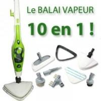 balai clean up