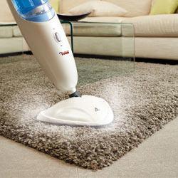 balai vapeur pour tapis