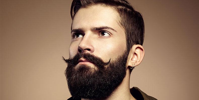 barbe bien fournie