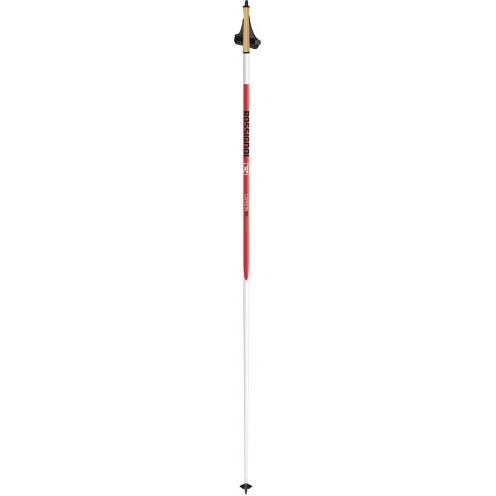baton ski femme