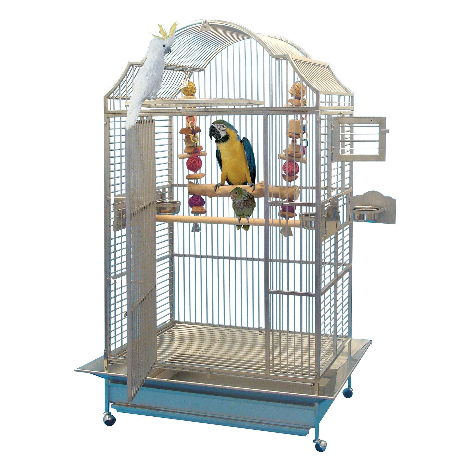 cage pour grand perroquet