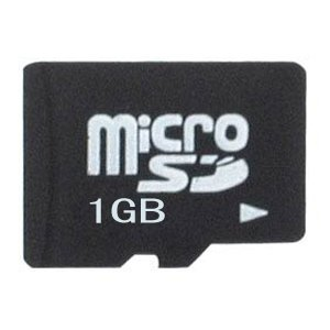 carte memoire 1gb