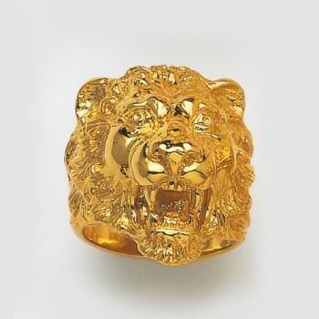 chevaliere lion