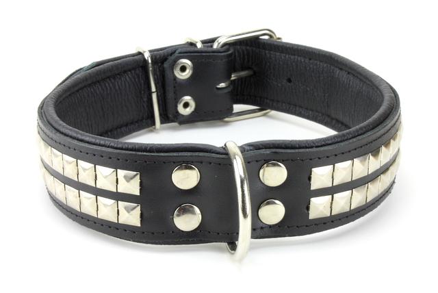 collier cuir clouté pour chien