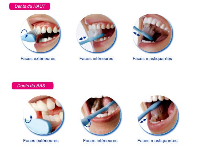comment brosser dents
