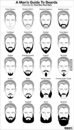 differente coupe de barbe