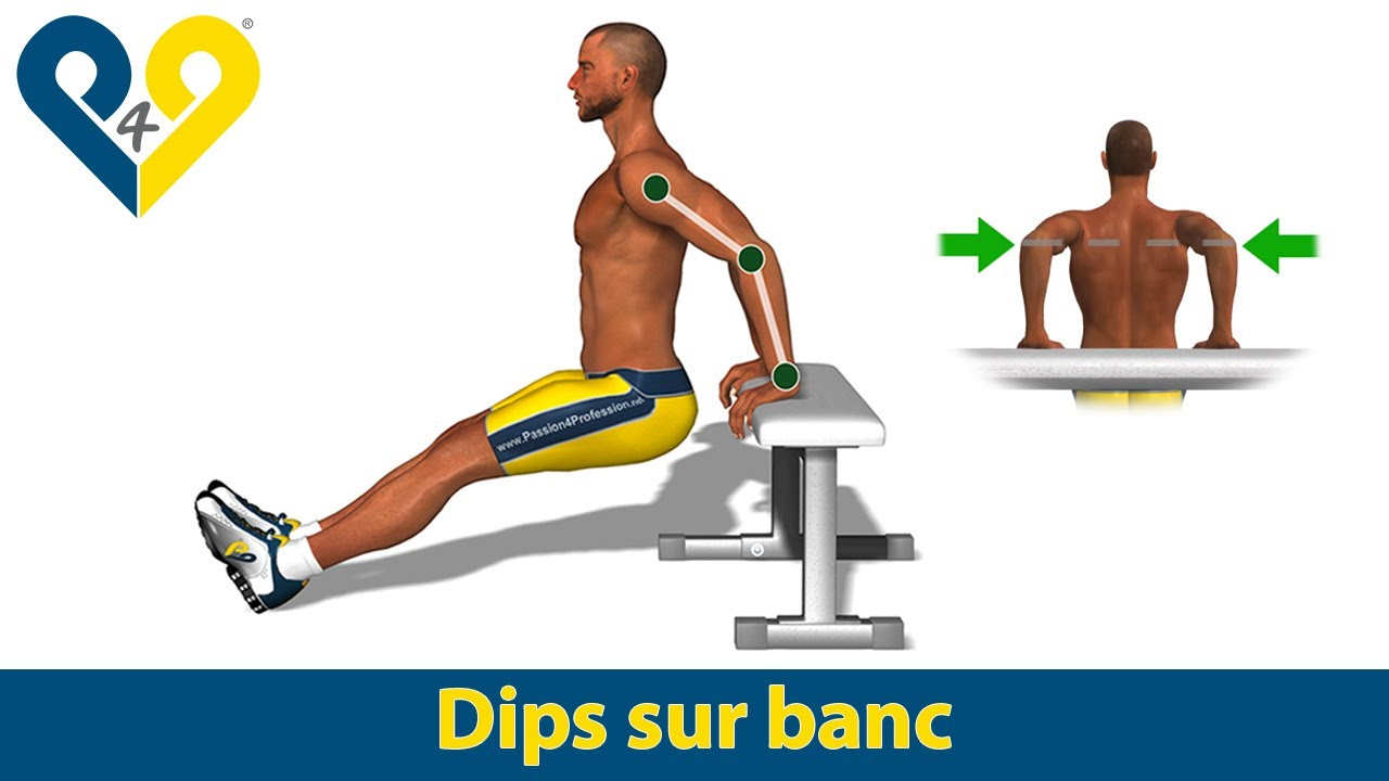 dips chaise