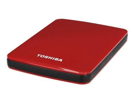 disque dur externe 500g