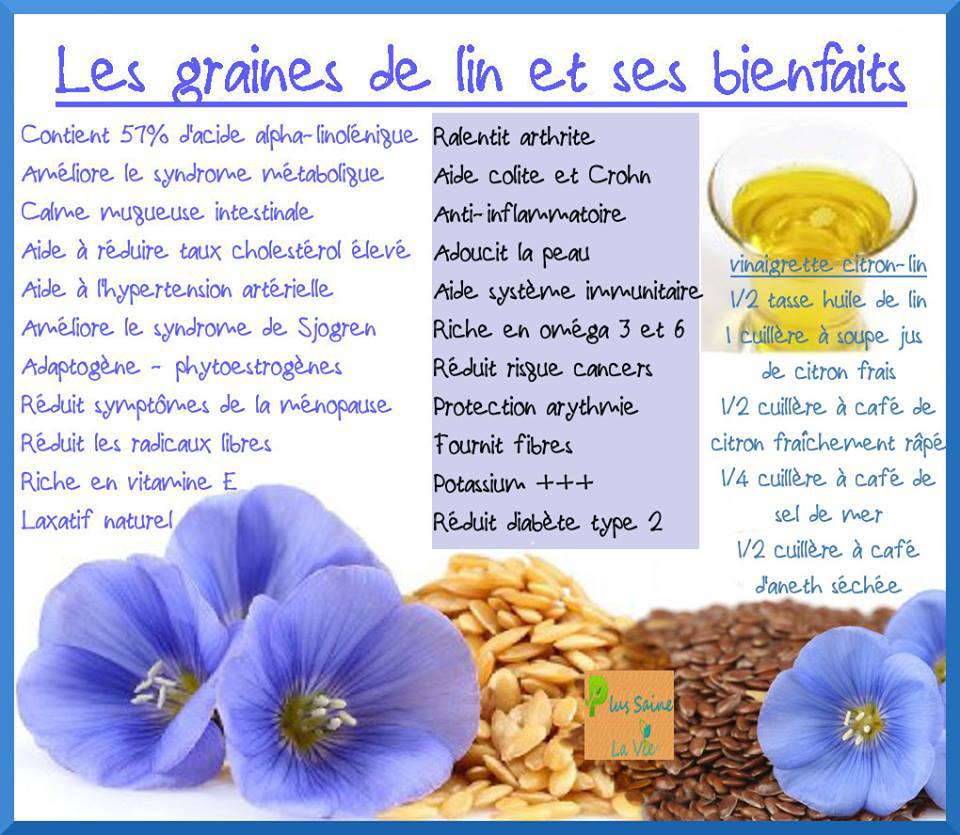 graine de lin bienfaits