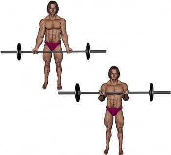 grande barre de musculation
