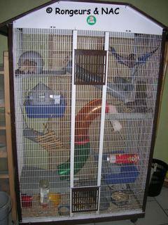 grande cage pour rat
