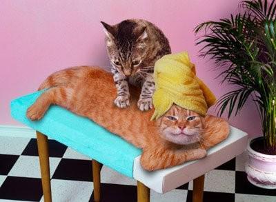 gros masseur