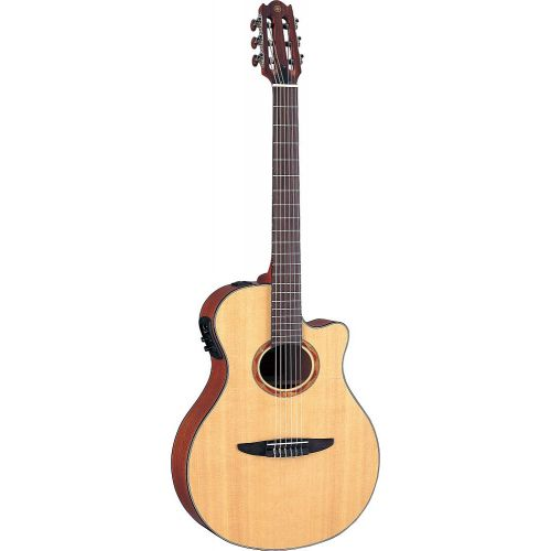 guitare electro accoustic