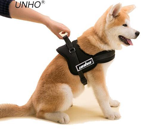 harnais pour chien de petite taille