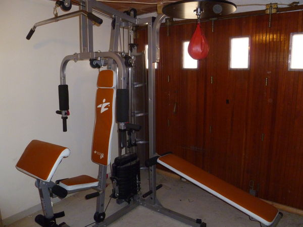 machine de musculation occasion
