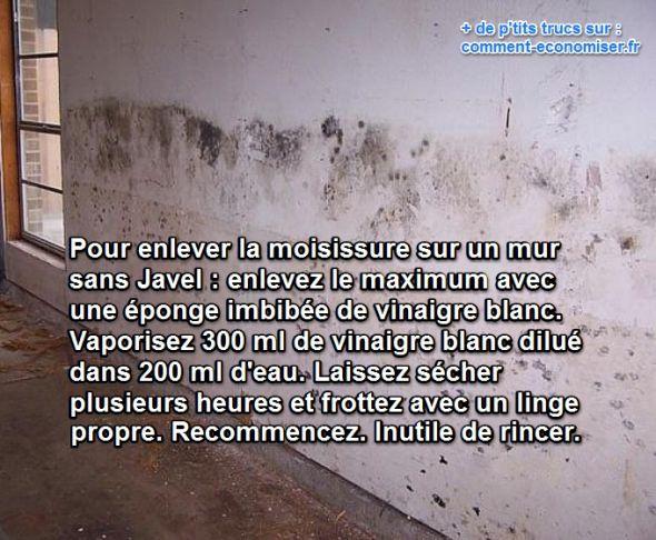 nettoyer moisissure mur