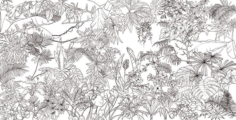 papier peint dessin noir et blanc