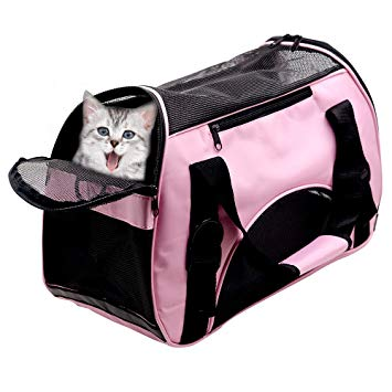 sac de transport pour chat amazon