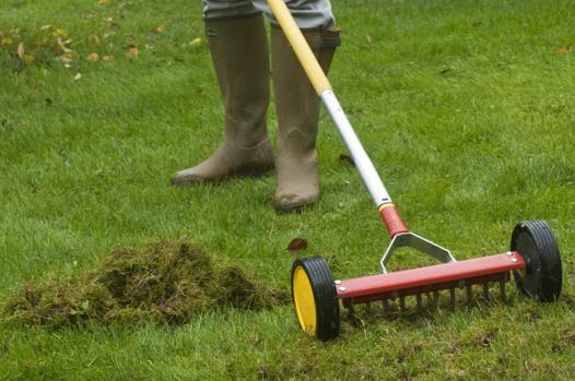 scarificateur pelouse manuel