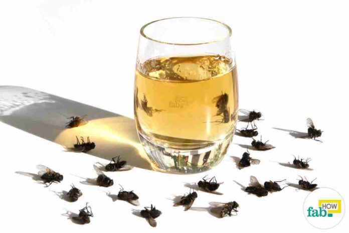 se débarrasser des mouches