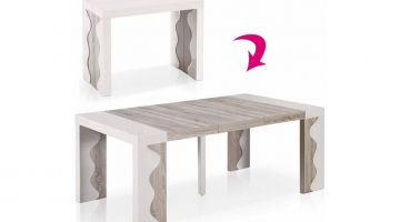 table extensible 10 personnes